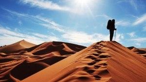 Caminante del Desierto